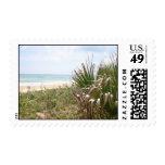 Beachgrass Postage Stamp