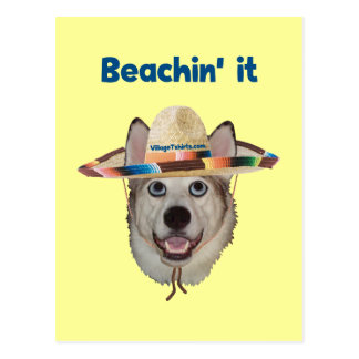 Beachin It Beach Dog Postcard