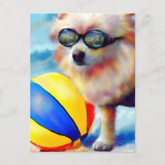 Beachin' (Pomeranian) Postcard postcard