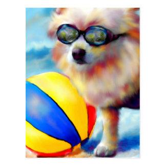 Beachin' (Pomeranian) Postcard