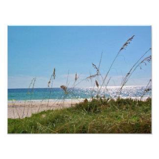 beachscape sand water sea oats photo print