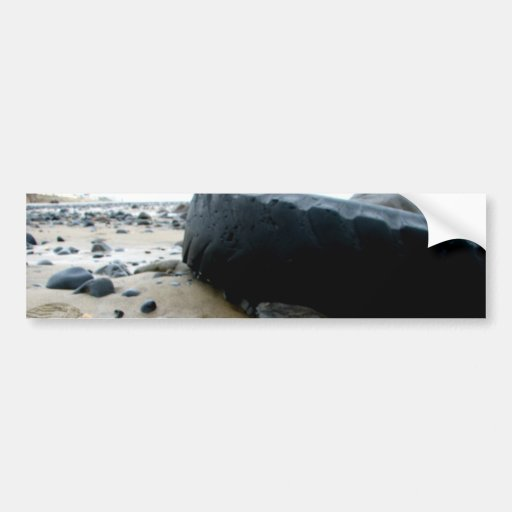 BeachTire Car Bumper Sticker