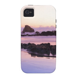 Beachy Babe iPhone 4 Cover