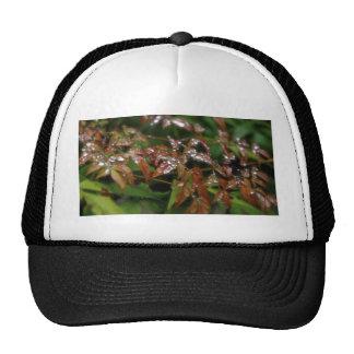 Beading Trucker Hat