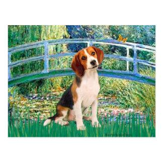 Beagle1 - Puente Tarjeta Postal