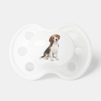 Beagle #1 - A Baby Pacifier