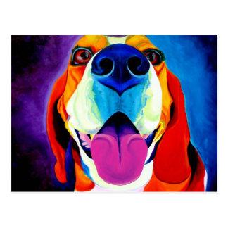Beagle #3 postcard