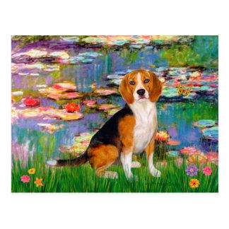 Beagle 7 - Lilies 2 Postcard