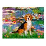 Beagle 7 - Lirios 2 Postal