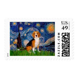 Beagle 7 - Noche estrellada