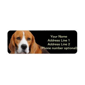 Beagle Address Sticker Return Address Label