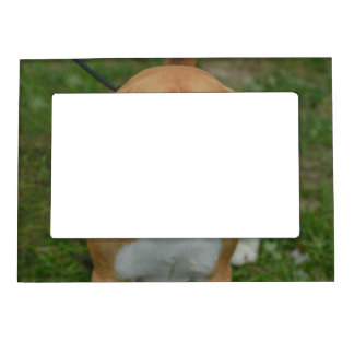 Beagle adorable marcos magneticos de fotos