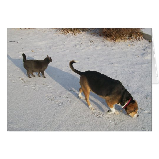 Beagle and Russian Blue In The Snow Greeting Card