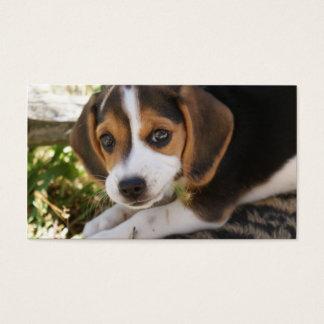 Beagle Baby Dog Business Card