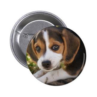 Beagle Baby Dog Pin