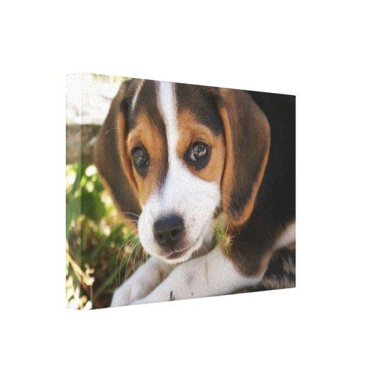 Beagle Baby Dog Canvas Print