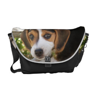 Beagle Baby Dog Courier Bag