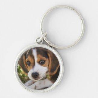 Beagle Baby Dog Key Chain