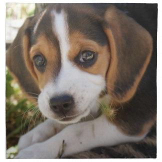 Beagle Baby Dog Napkin
