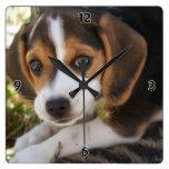 Beagle Baby Dog Square Wall Clock