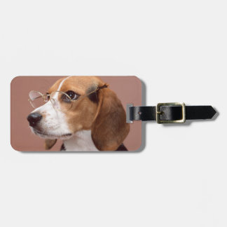 Beagle Bag Tag