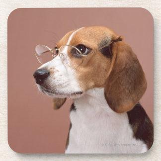 Beagle Beverage Coaster