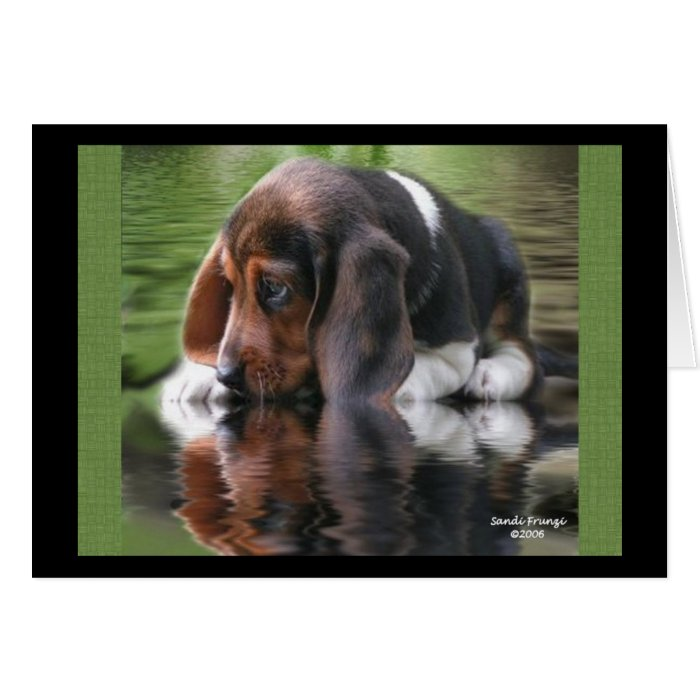 beagle birthday card  zazzle, Birthday card