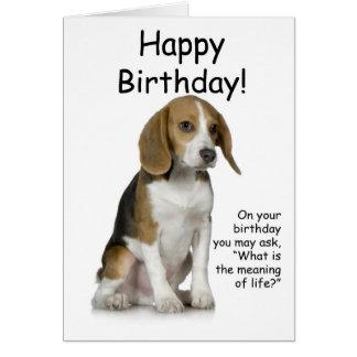 Beagle Birthday Card