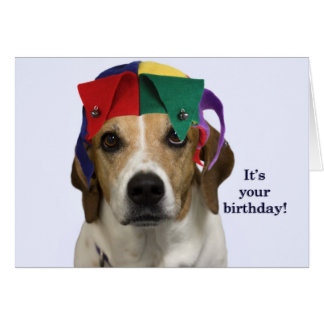 Beagle Birthday Card by Focus for a Cause