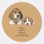 Beagle Buddies Address Label Classic Round Sticker