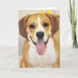 Beagle-Bulldog Mix Photo Card
