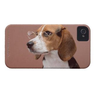 Beagle Case-Mate iPhone 4 Cases
