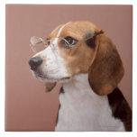 Beagle Ceramic Tile