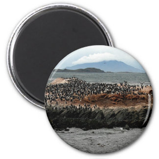 Beagle Channel 2 Inch Round Magnet