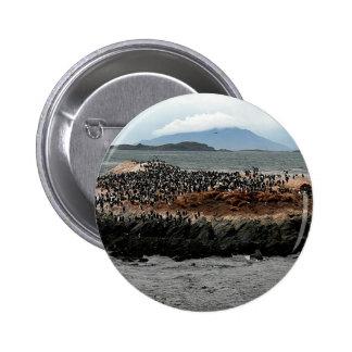 Beagle Channel Pinback Button