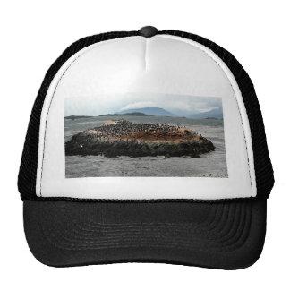 Beagle Channel Trucker Hat