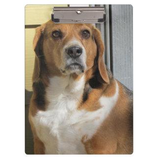 Beagle Clipboard