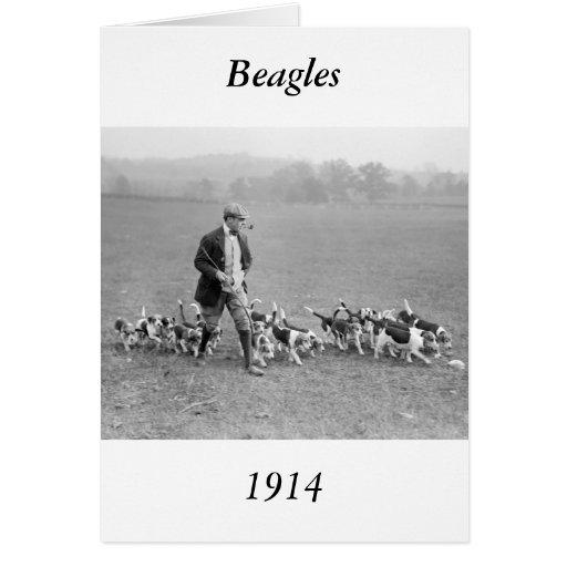Beagle Club, 1914 Card