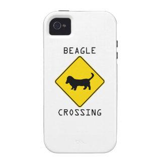 Beagle Crossing Case-Mate iPhone 4 Case