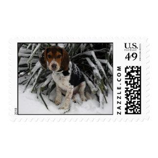 Beagle de la nieve - franqueo Snoopy lindo del inv Estampillas