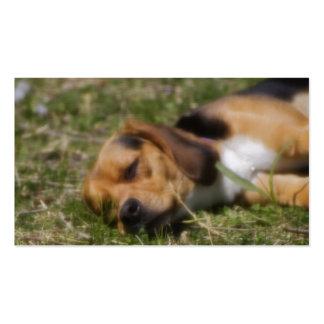 Beagle de Sleepie Tarjetas De Negocios