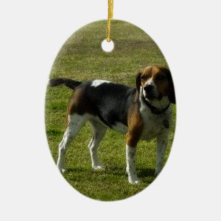 Beagle Adorno De Navidad