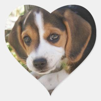 Beagle del perro de perrito pegatina en forma de corazón