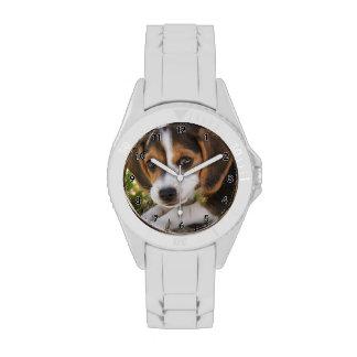 Beagle del perro de perrito reloj de mano