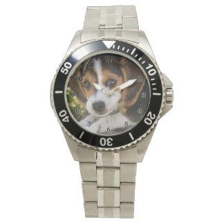 Beagle del perro de perrito relojes