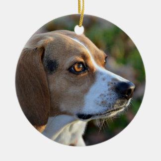 Beagle Determination Ceramic Ornament