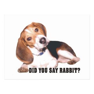 Beagle Did You Say Rabbit? Postcard