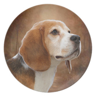Beagle Dinner Plate
