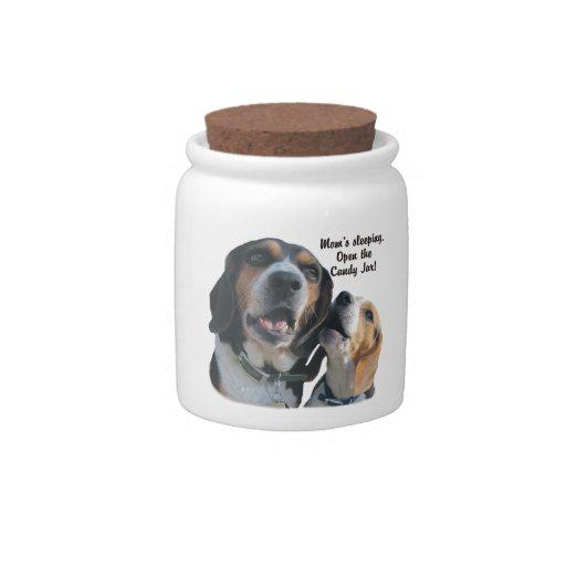 Beagle Dog Buddies Raiding the Candy Jar