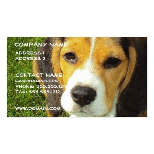 Beagle Dog Business Card
